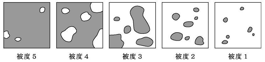 「被度 植生」の画像検索結果